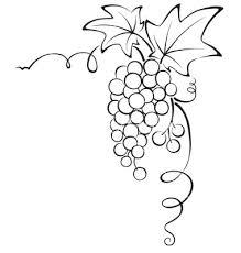 grapevine1